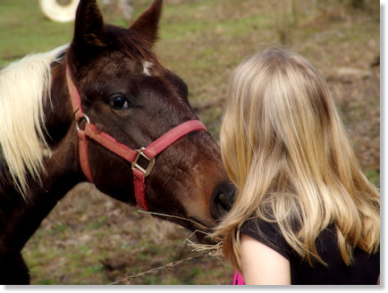 Kisses for the horse.