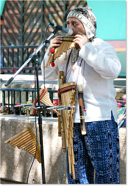 Incredible Musician