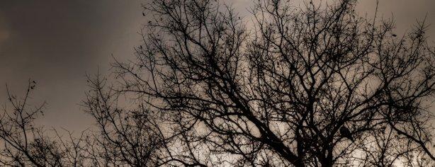 Dark and Dreary Start