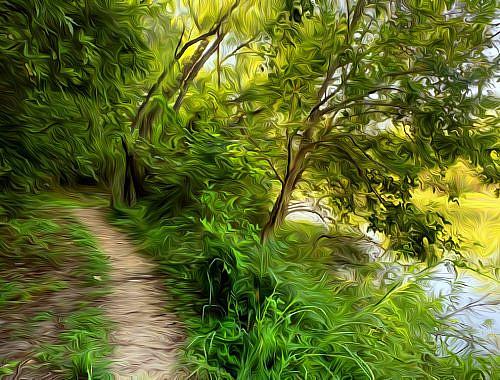 Cibolo Creek Trail Art
